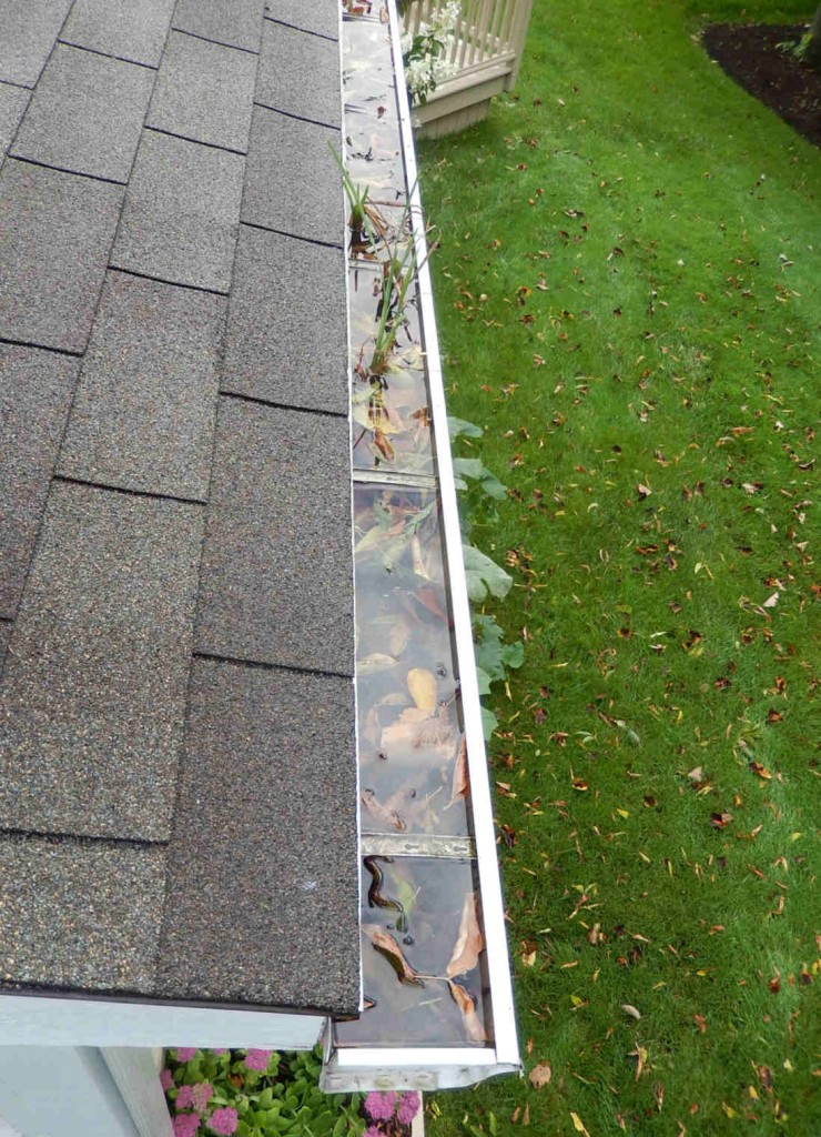 Roof Water Drainage A Best Home Inspection Home